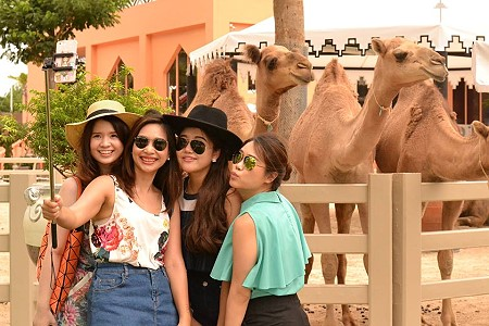 Camel Republic Opens in Cha-am with Animals and Rides