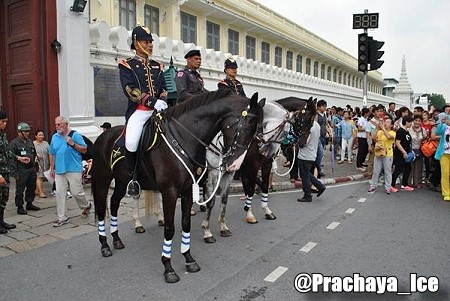 Mounted Horse Patrol popular with Tourists in Bangkok