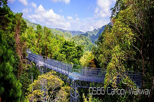 Awesome Canopy Walkway At Queen Sirikit Botanic Garden U2013 Thai Travel News U0026 Events