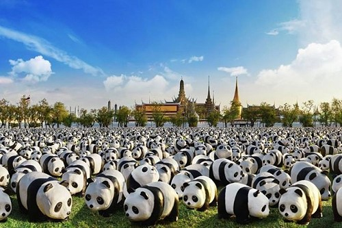 1,600 Pandas have just arrived in Bangkok