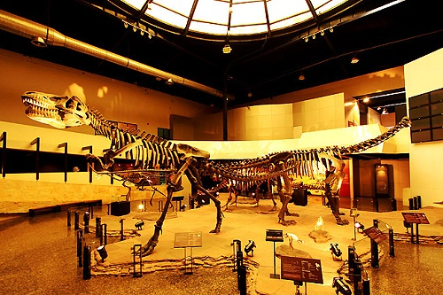 Six dinosaur museums in Thailand have attracted 800,000 visitors