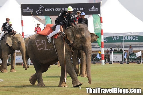 King's Cup Elephant Polo Tournament until Sunday