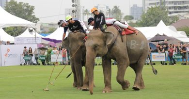 Anantara announces dates to Bangkok's 2018 King's Cup Elephant Polo Tournament
