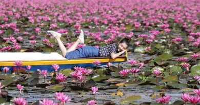 Visit the Red Lotus Lake in Udon Thani