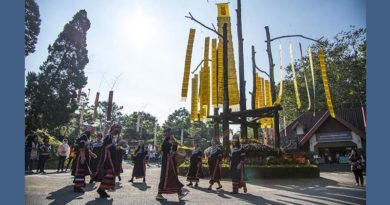 Colours of Doi Tung festival in Chiang Rai until 28 January 2018